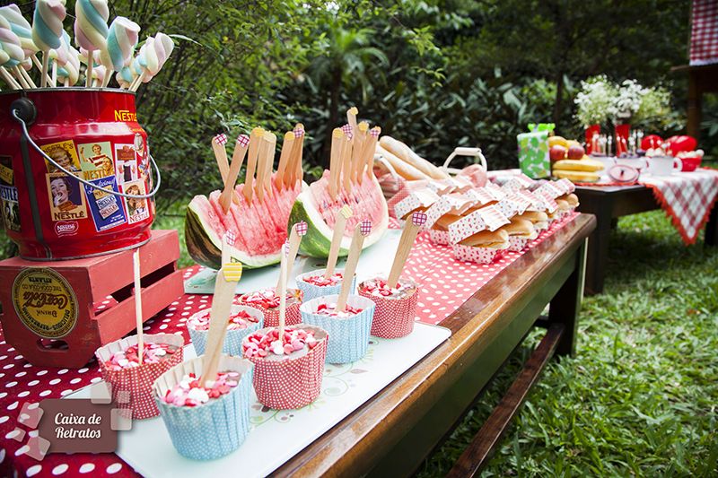 Festa pic nic escolar maesbrasileiras.com.br 6